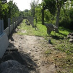 Rozsądek zrozumienie i dobra wola jest efektem porozumienia  działkowców z Zarządem ogrodu